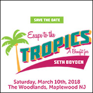 Seth Boyden auction 2018