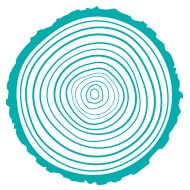 Seth Boyden tree ring logo